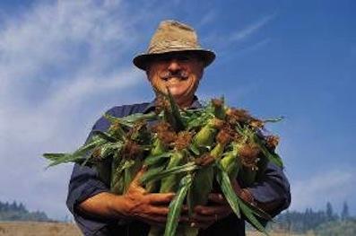 https://www.eolopress.it/index/wp-content/uploads/2014/08/agricoltore.jpg