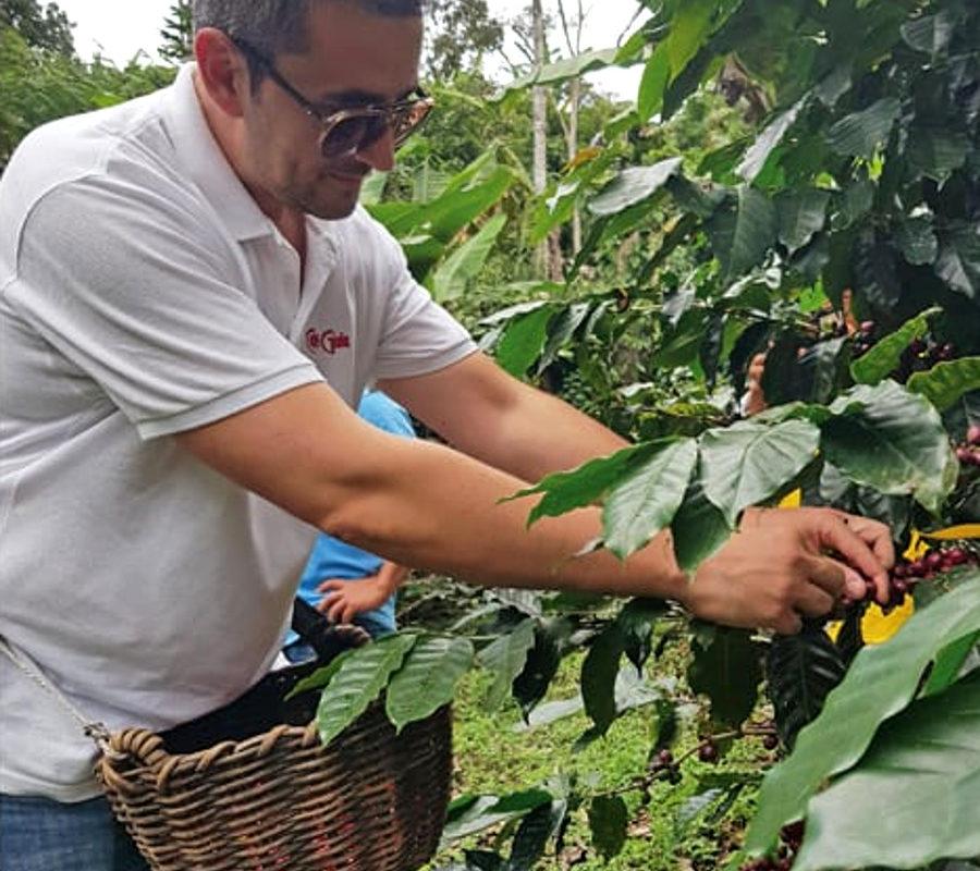 Caffè espresso italiano: settant'anni con Gioia